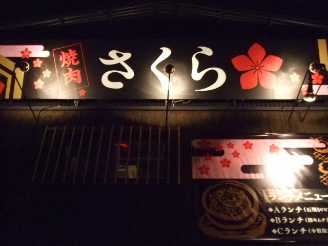 2009_0416_050